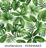 tropical seamless pattern with... | Shutterstock .eps vector #433646665