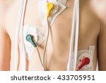 heart electrocardiogram or...   Shutterstock . vector #433705951