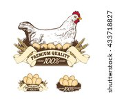 Chicken Farm Premium Quality. ...