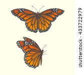 vector hand drawn illustration...   Shutterstock .eps vector #433722979