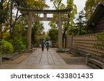 young lovers walk hand in hand... | Shutterstock . vector #433801435