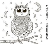 cute zentangle owl at night for ... | Shutterstock .eps vector #433804375