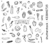 hand drawn doodle vegetables... | Shutterstock .eps vector #433840735