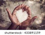 hands holding rice | Shutterstock . vector #433891159