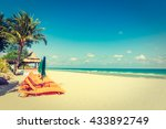 vintage filter   umbrella and... | Shutterstock . vector #433892749