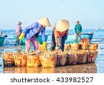 Binh Thuan  Vietnam   January...