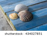 Three Shells On The Beach  Blu...