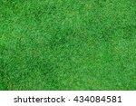 green grass. natural background ... | Shutterstock . vector #434084581