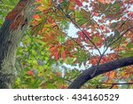 the various dimensions of...   Shutterstock . vector #434160529