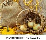 still life with pumpkin  basket ...