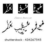 sakura design. sakura tree in... | Shutterstock .eps vector #434267545