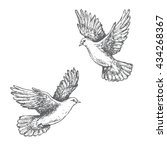 Hand Drawn Pair Of Flying Doves ...