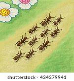 Ants Walking Along The Path  ...