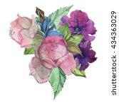 hand drawn watercolor...   Shutterstock . vector #434363029