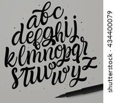 vector handwritten brush script.... | Shutterstock .eps vector #434400079