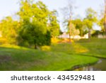 blurred park  natural background | Shutterstock . vector #434529481