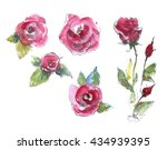 Watercolor Pink Rose Set....