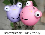 The Purple And Pink Frog Head...