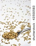 some organic caraway seed and a ... | Shutterstock . vector #43500583