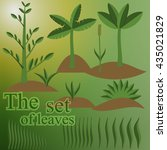 set leaves and plants  vector... | Shutterstock .eps vector #435021829