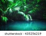 Fantasy Jungle Landscape Of...