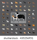 various dog breeds side view | Shutterstock .eps vector #435256951