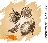 vector sketch background fruit. ... | Shutterstock .eps vector #435513451