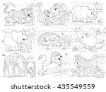 at the zoo. african animals.... | Shutterstock . vector #435549559