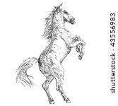 stock vector illustration...   Shutterstock .eps vector #43556983