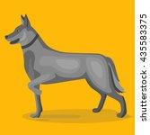 dog illustration. sheep dog.... | Shutterstock .eps vector #435583375