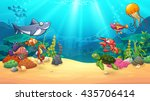 animals in underwater world ...