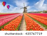 Landscape Of Netherlands Tulip...