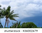 Coconut Tree And Cloudy Sky...