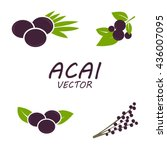 vector acai icons set on white... | Shutterstock .eps vector #436007095