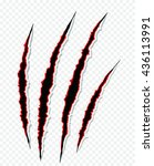 cat claws scratches on... | Shutterstock .eps vector #436113991