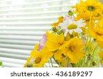 bouquet of wild flowers ...   Shutterstock . vector #436189297