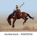 Bucking Rodeo Horse Isolated...