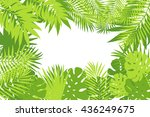 summer tropical palm tree... | Shutterstock .eps vector #436249675