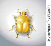 golden egyptian beetle insect... | Shutterstock .eps vector #436410844