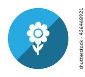flowers icon vector