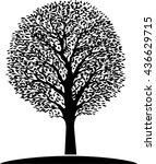 tree vector illustration | Shutterstock .eps vector #436629715