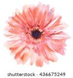 Watercolor Hand Paint  Gerbera...
