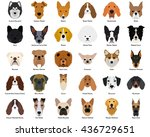Stock vector set of different breeds of dogs on a white background 436729651