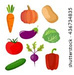 Vegetables Vector. Vegetables...