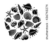 seashells background. vector | Shutterstock .eps vector #436743274