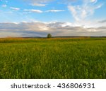 wide green meadow | Shutterstock . vector #436806931