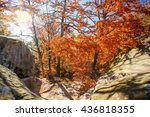 beautiful landscape  colorful... | Shutterstock . vector #436818355