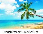 Beautiful Maldive Beach. View...