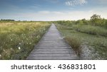 footbridge on a bright day with ... | Shutterstock . vector #436831801