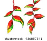 Red Green Heliconia Flower...